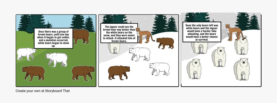 Brown Bear Natural Selection, Transparent Clipart
