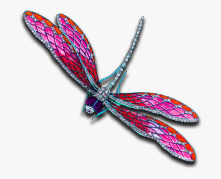 #pink #dragonfly #insect #bug #fly #jewelry #silver - Dragonflies And Damseflies, Transparent Clipart