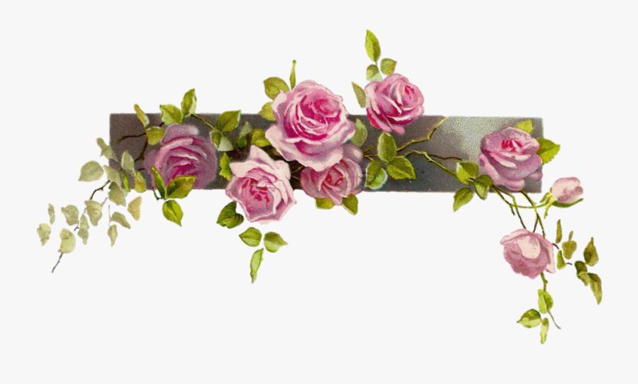 #rose #vine #vintage - Border Line Flower Clipart, Transparent Clipart