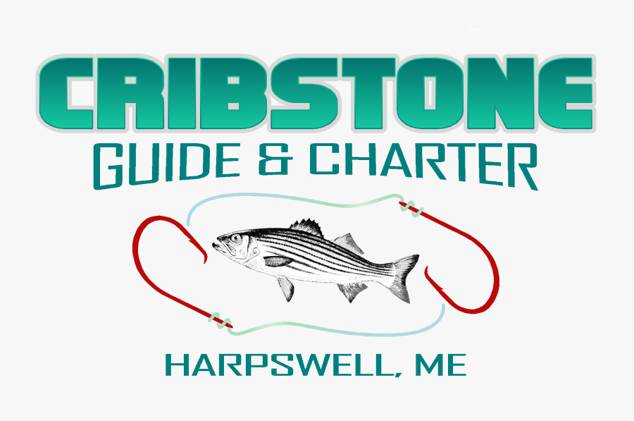 Guide Fishing, Boat Charters And Kids Trips In Harpswell, - Pull Fish Out Of Water, Transparent Clipart