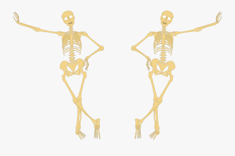 Skeleton Hand On Hip - Skeleton With Hands On Hips, Transparent Clipart