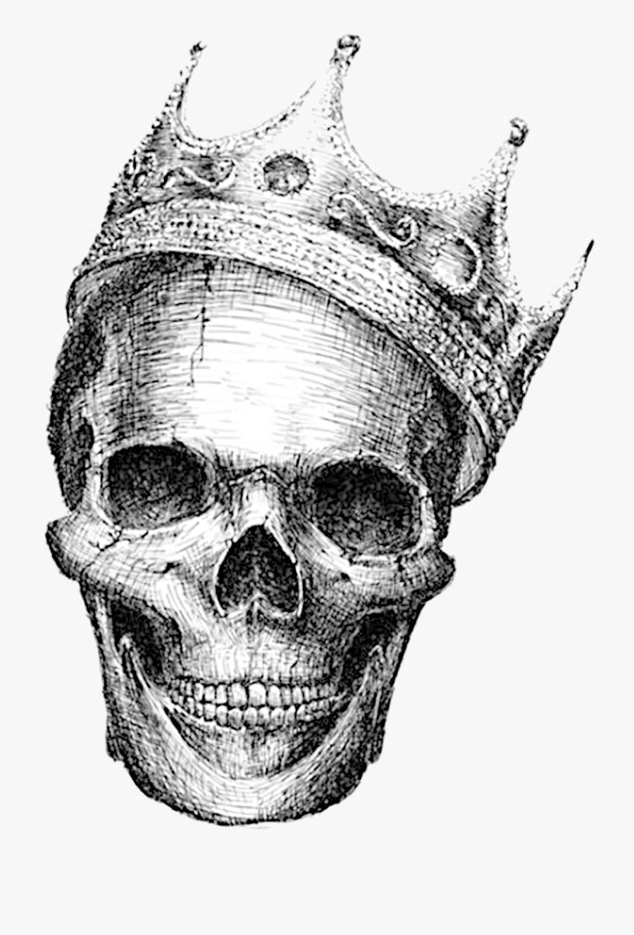 Skeleton Skull Calavera Human Symbolism Drawing Clipart - Black And White Skull Drawings, Transparent Clipart