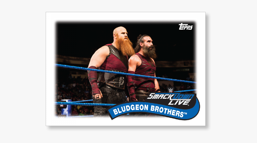 Boxing-ring - Erick Rowan Bludgeon Brothers, Transparent Clipart