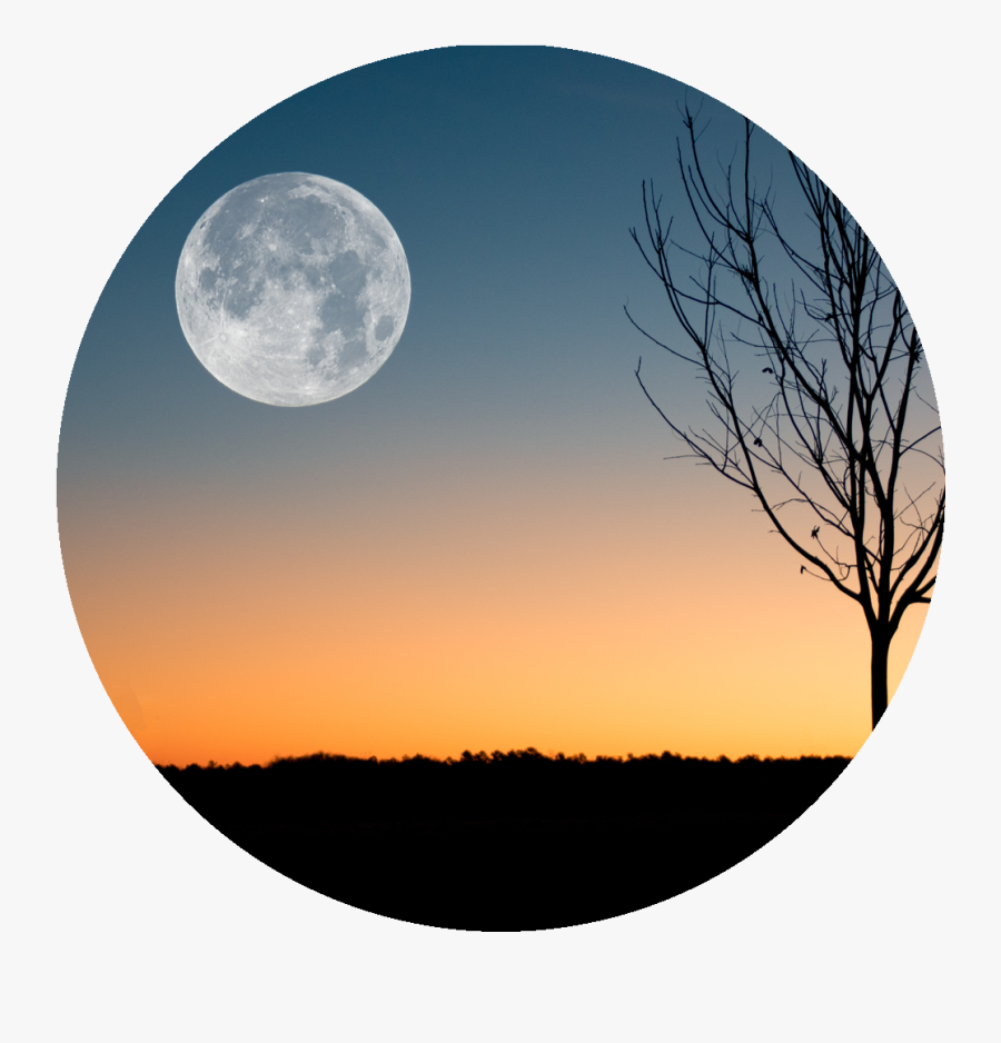"""Harvest Moon Png -because I""""m Still In Love With You, - February Full Moon 2019, Transparent Clipart"""