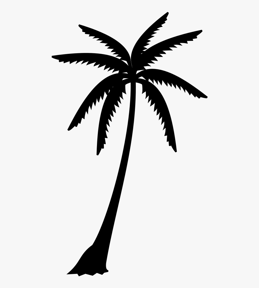 Palm Trees Black & White - Palm Tree Leaves Silhouette, Transparent Clipart