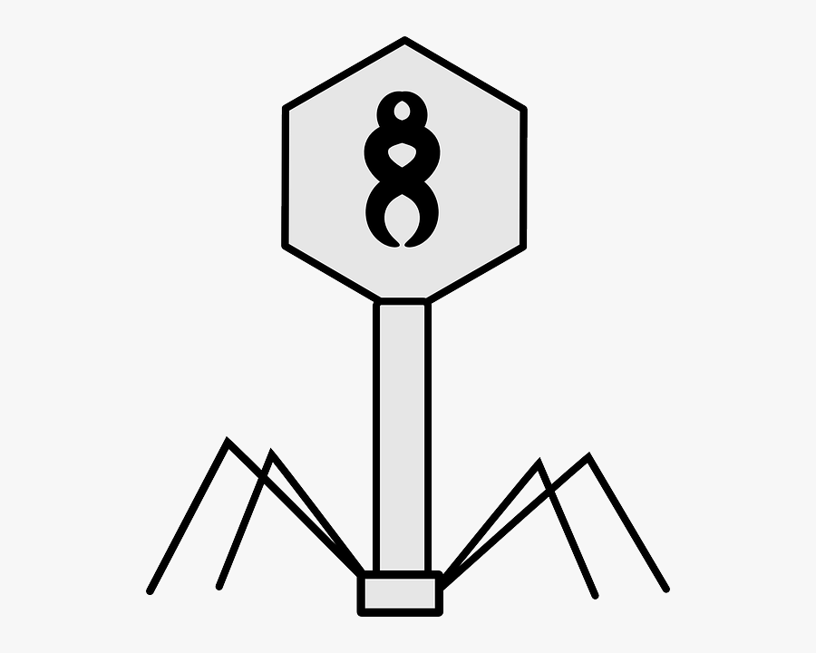 Virus, Bacteriophage, Science, Biology, Structure - Viruses Black And White, Transparent Clipart