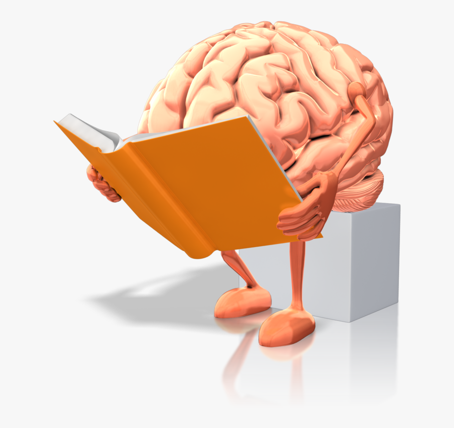 Doing Wso Research - Brain Reading A Book, Transparent Clipart