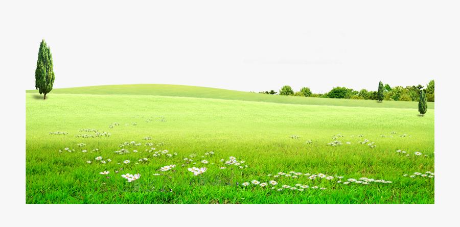 Transparent Grasslands Clipart - Background Grass Nature ...