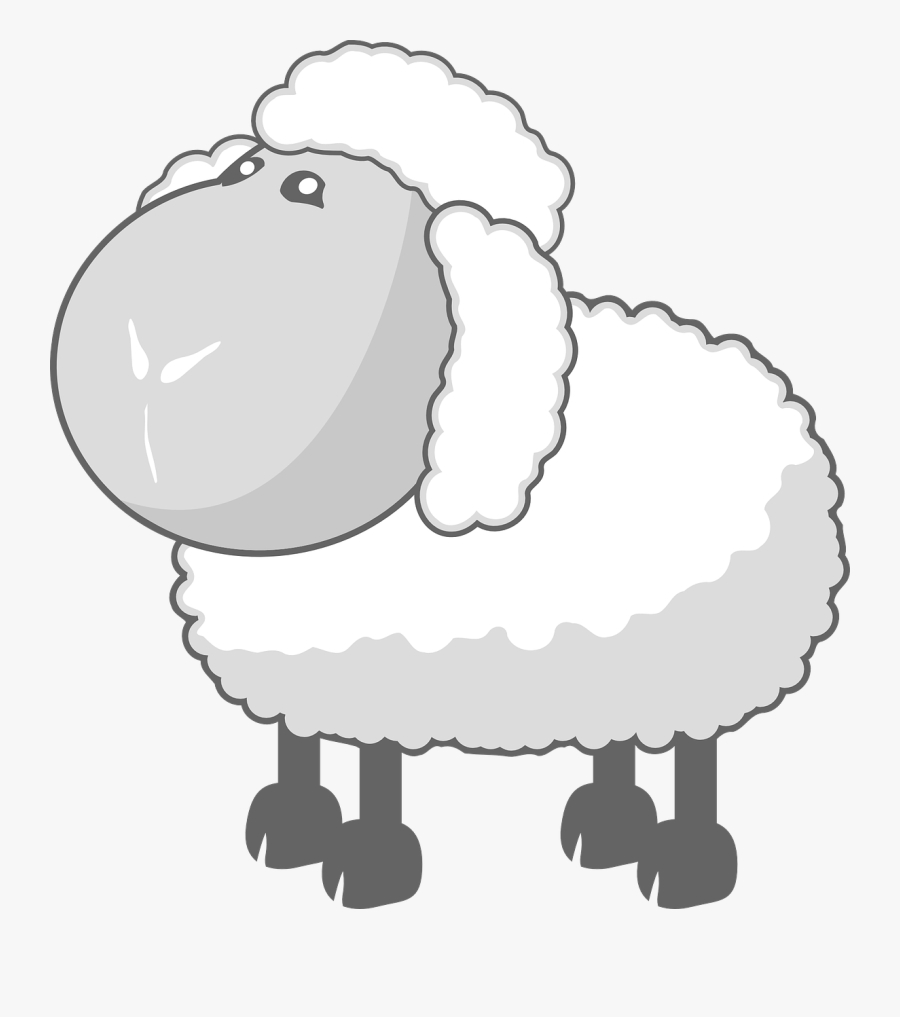 Sheep In Gray - Baa Baa Wooly Sheep, Transparent Clipart