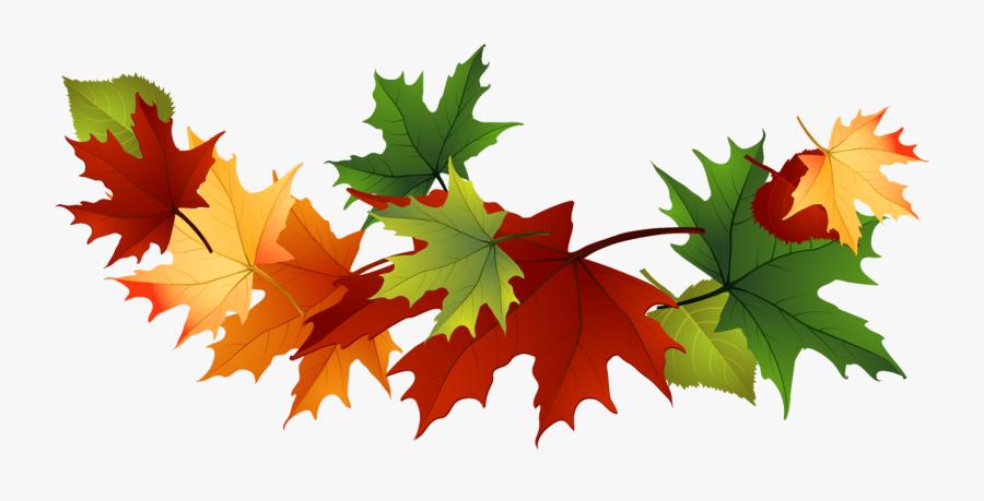 Fall Leaves Clip Art Free Fall Transparent Leaves - Maple Leaves Clip Art, Transparent Clipart