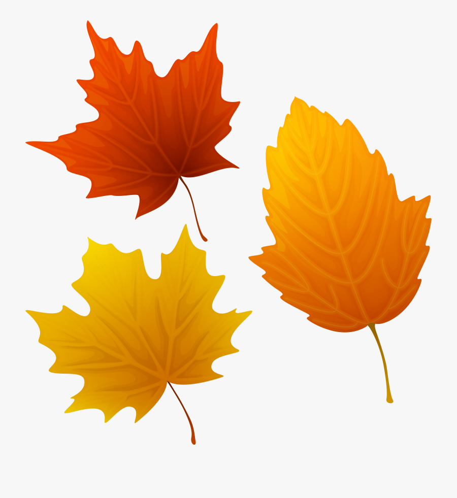 Set Of Autumn Leaves Clipart Png Image - Autumn Leaves Clipart, Transparent Clipart