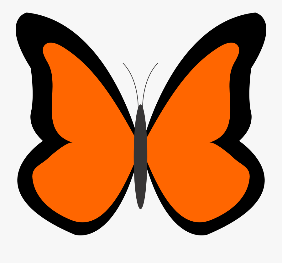 Bug Clipart Orange Butterfly Pencil And In Color Bug - Blue Butterfly Clipart, Transparent Clipart