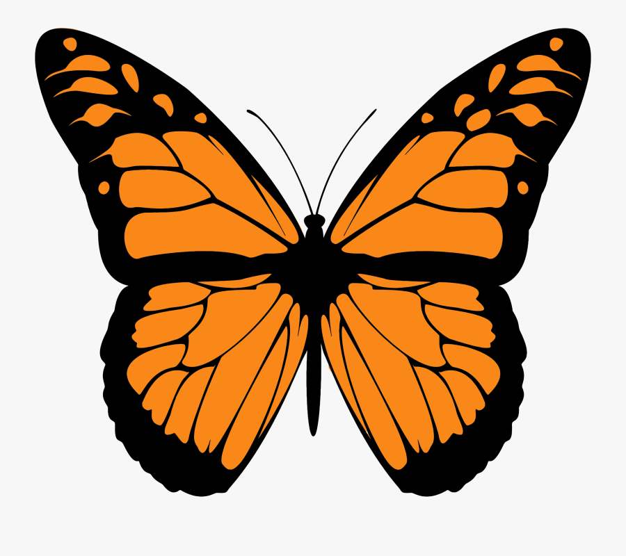 Butterfly Monarch Clipart The Cliparts Transparent - Monarch Butterfly Print Out, Transparent Clipart