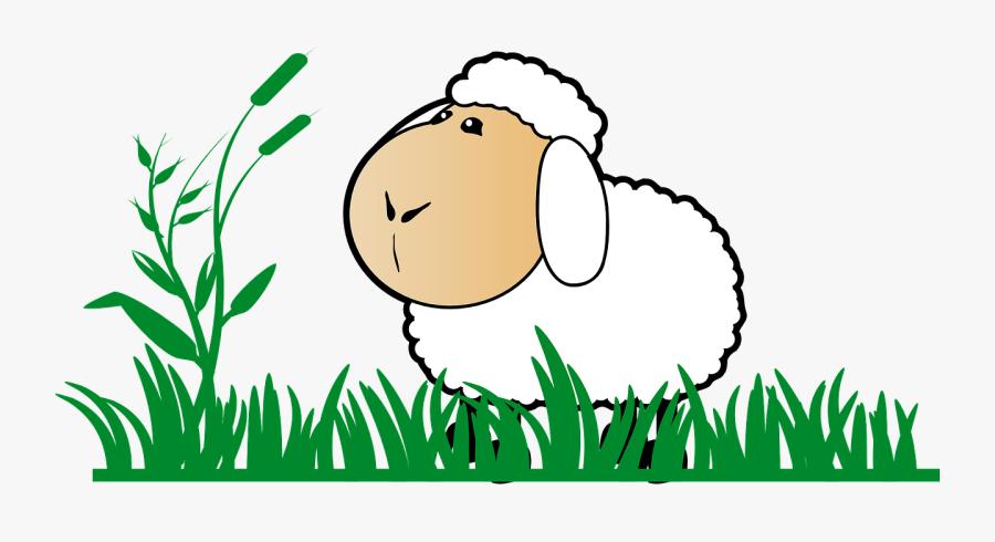 Grass, Sheep, Stand, Watch, Cartoon, Green, White - Sheep Clip Art, Transparent Clipart