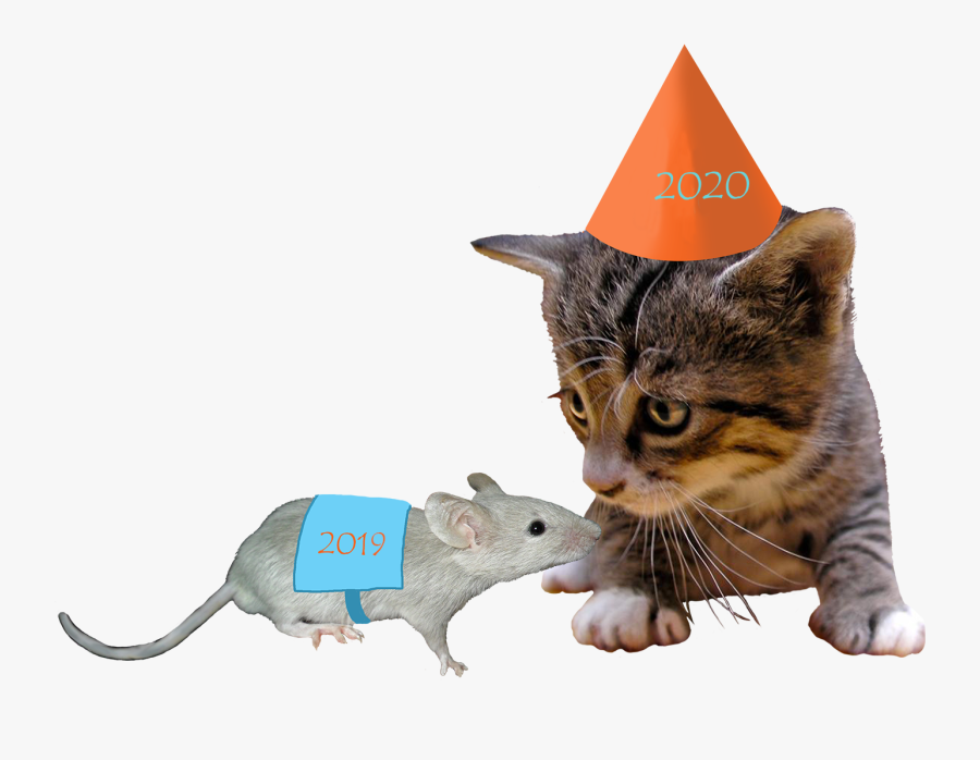 2018 Cat And 2017 Mouse - 2018 New Year Cat, Transparent Clipart
