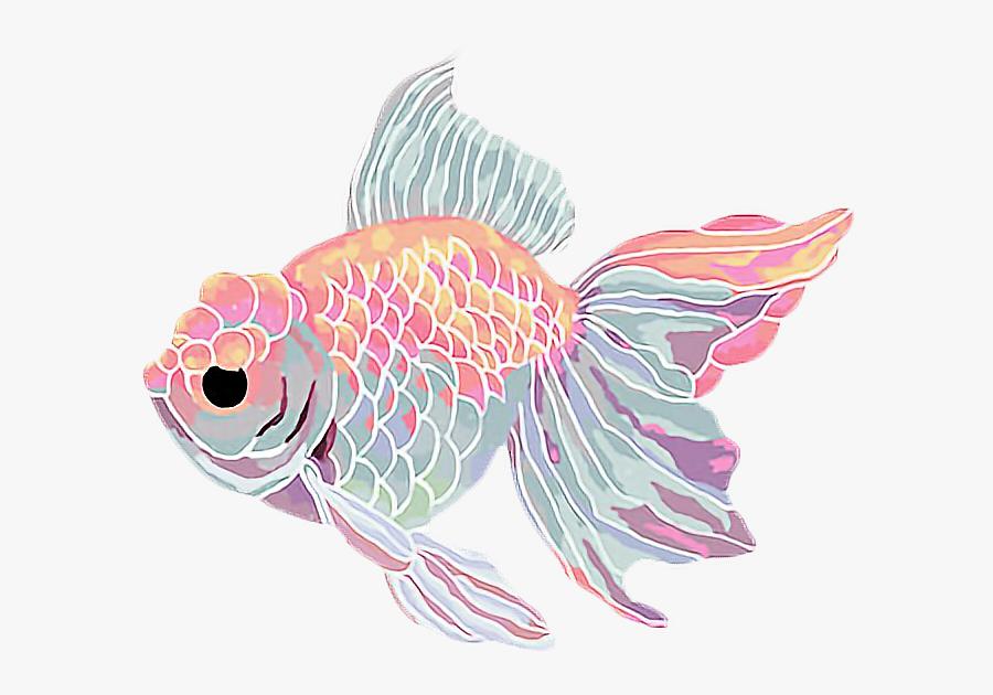 Transparent Goldfish Clipart Aesthetic Fish Gif Transparent Free Transparent Clipart Clipartkey