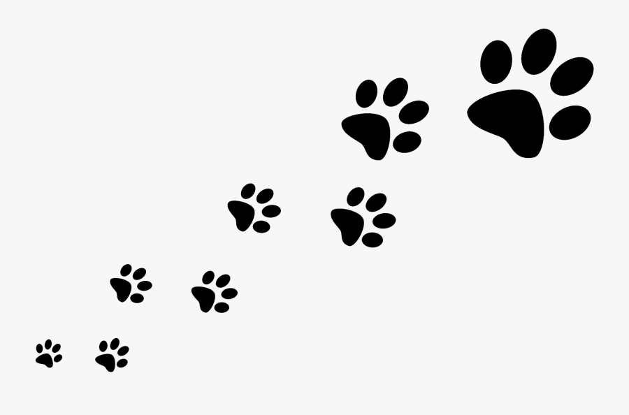 Dog Walking Pet Sitting Cat - Trail Of Paw Prints, Transparent Clipart