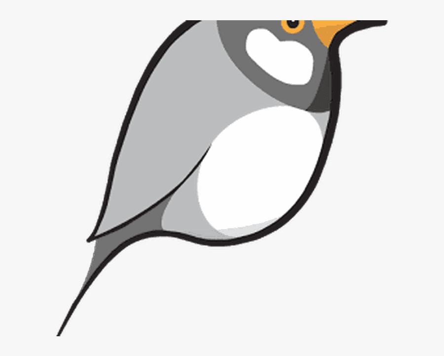 Free & Premium Vpn - Emperor Penguin, Transparent Clipart