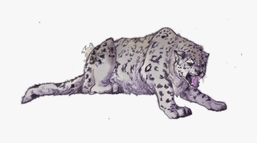 Snow Leopard Anime Drawing, Transparent Clipart