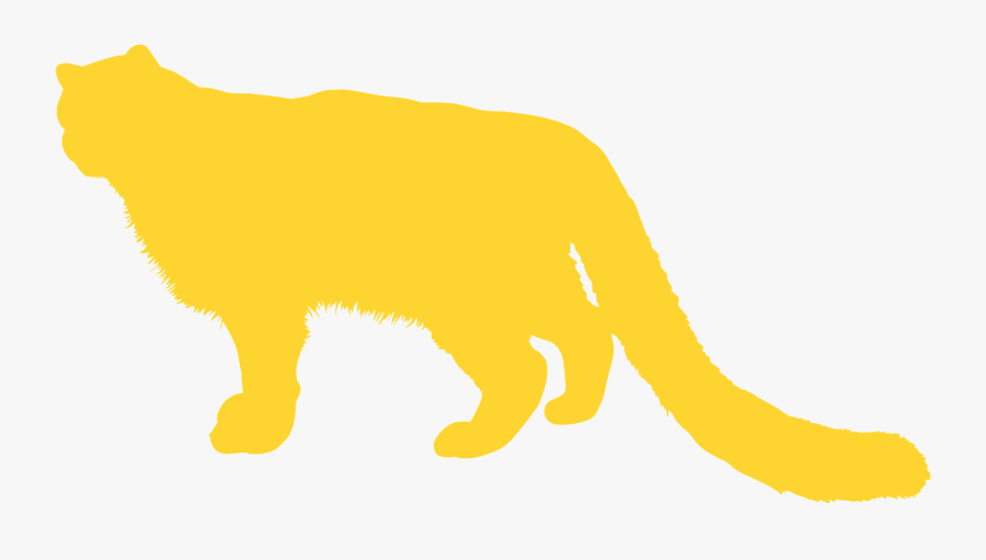 Cat, Transparent Clipart