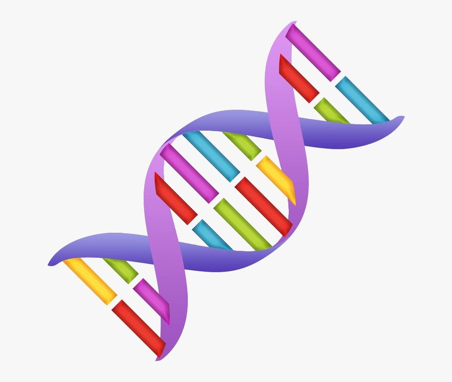 Dna Clipart Nucleic Acid - Dna Clipart, Transparent Clipart