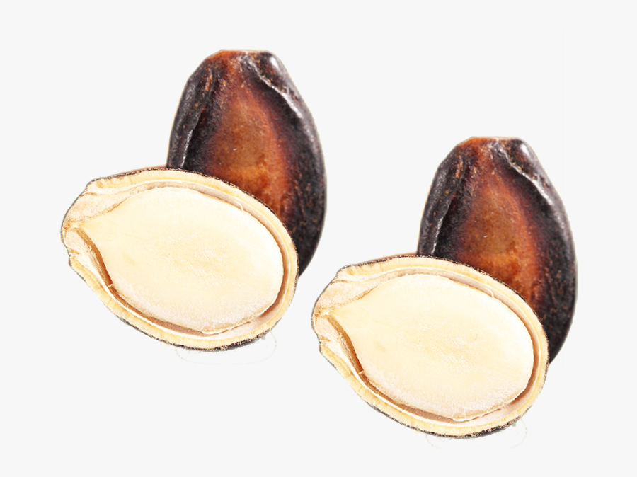 Clip Art Nut Seed Egusi With - Fruit, Transparent Clipart