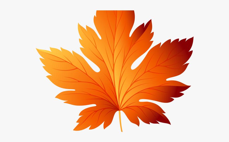 Transparent Autumn Leaves Vector, Transparent Clipart