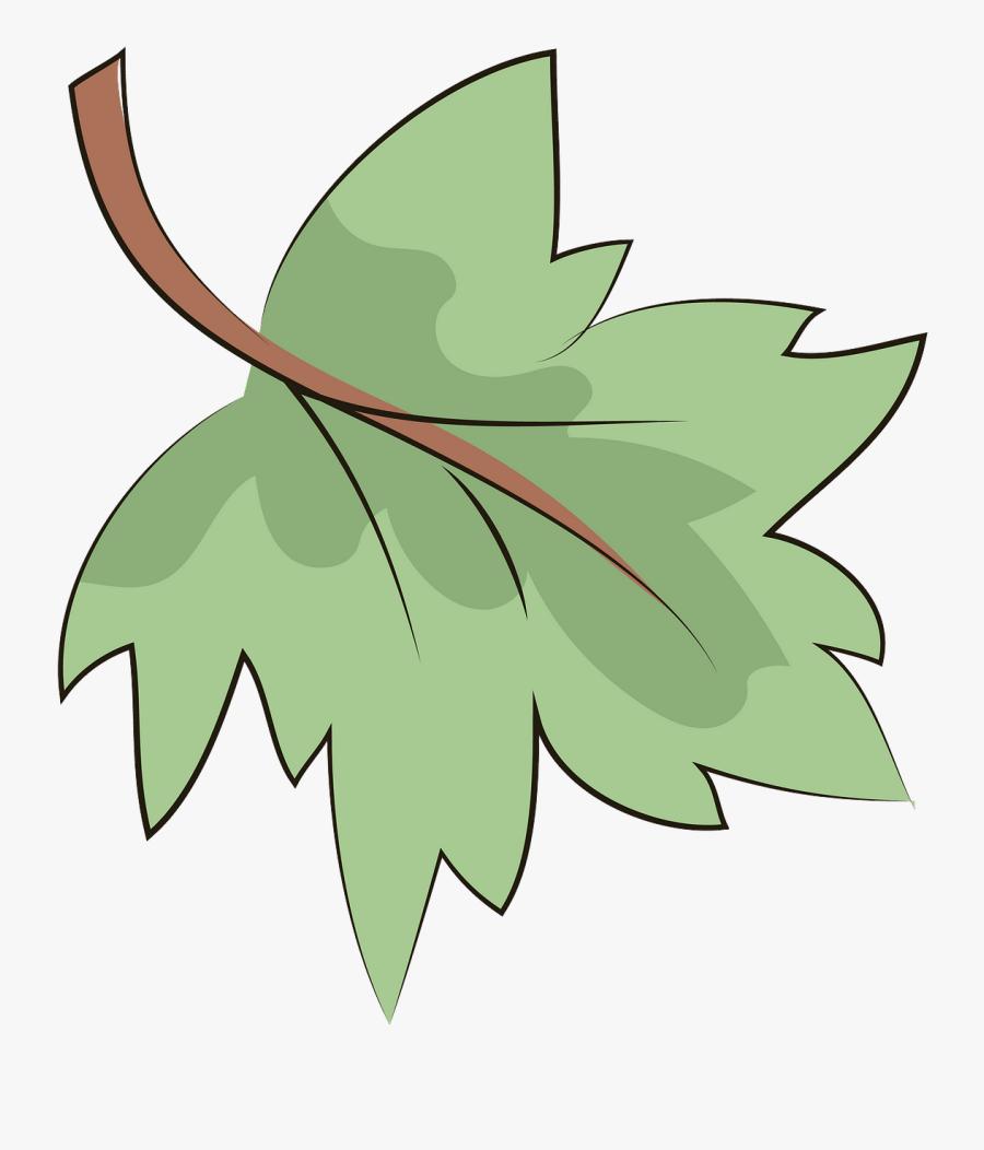 Maple Leaf, Transparent Clipart
