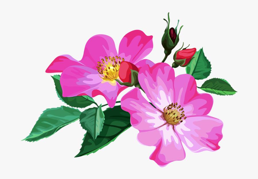 Album Design Flower Png, Transparent Clipart