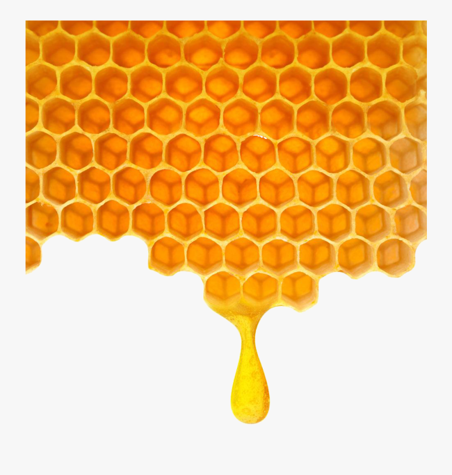 Poly Honey Honeycomb Png Download - Clipart Transparent Background Honeycomb, Transparent Clipart