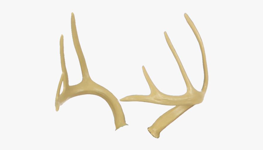 Antler Fallow Deer Elk Horn - Antler, Transparent Clipart
