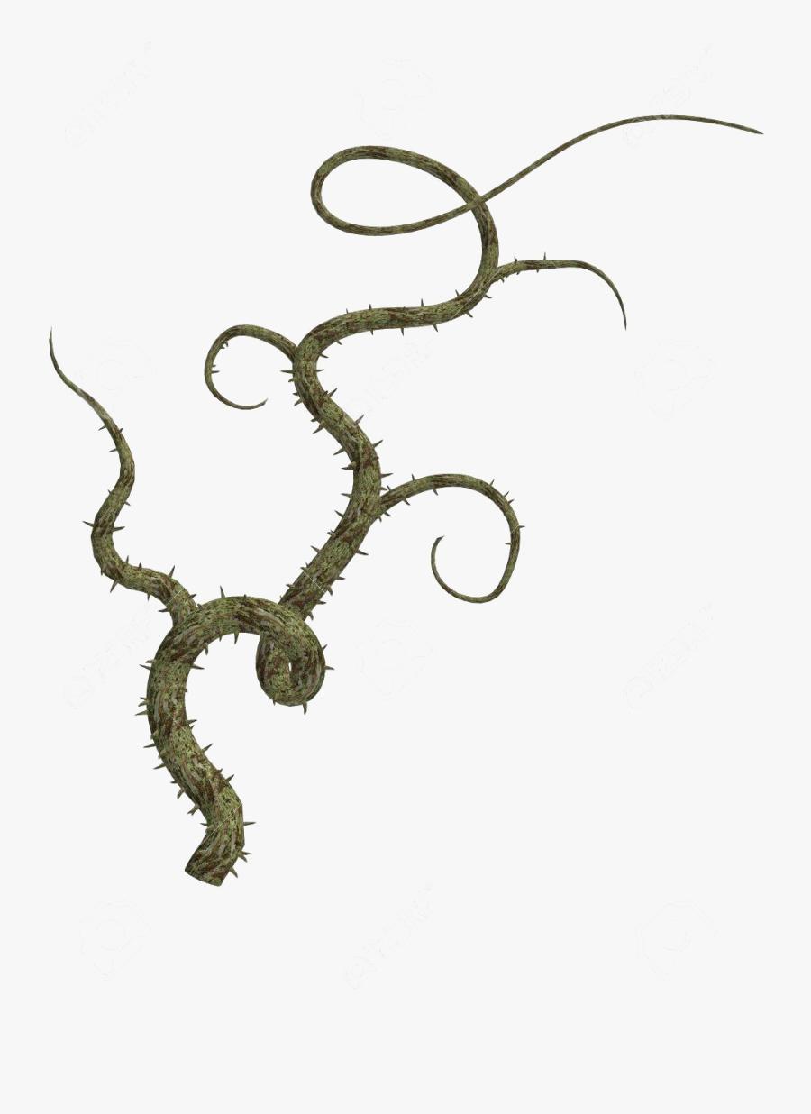 Jungle Vines Png Free Download - Thorn Vine Png, Transparent Clipart