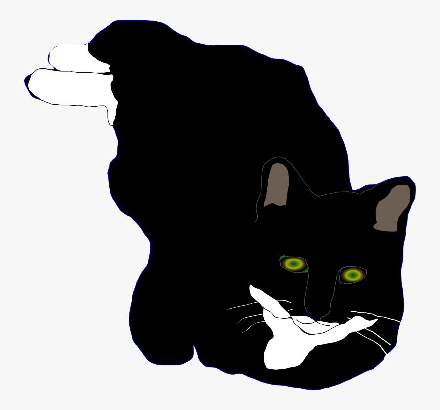 Feline - Domestic Short-haired Cat, Transparent Clipart