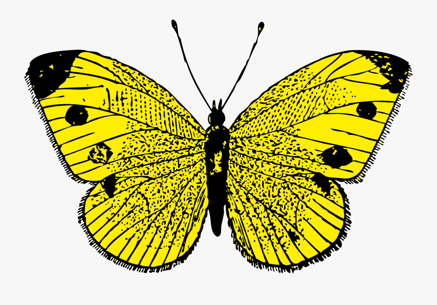Butterfly Png Image - Yellow Butterfly Moving Animation, Transparent Clipart