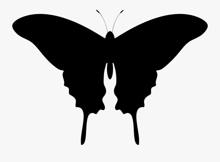 Orange Butterfly Clipart, Transparent Clipart