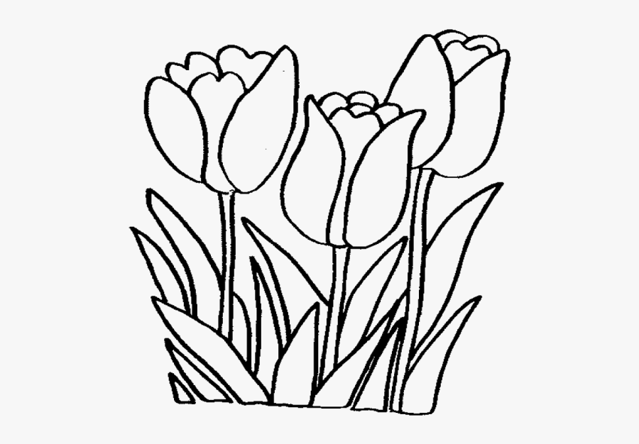 Flowers Color Clipart Bunga - Flowers Coloring Pages Printable, Transparent Clipart