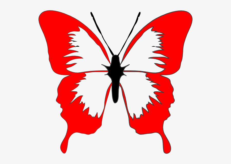 Butterfly Images Black And White Outline, Transparent Clipart