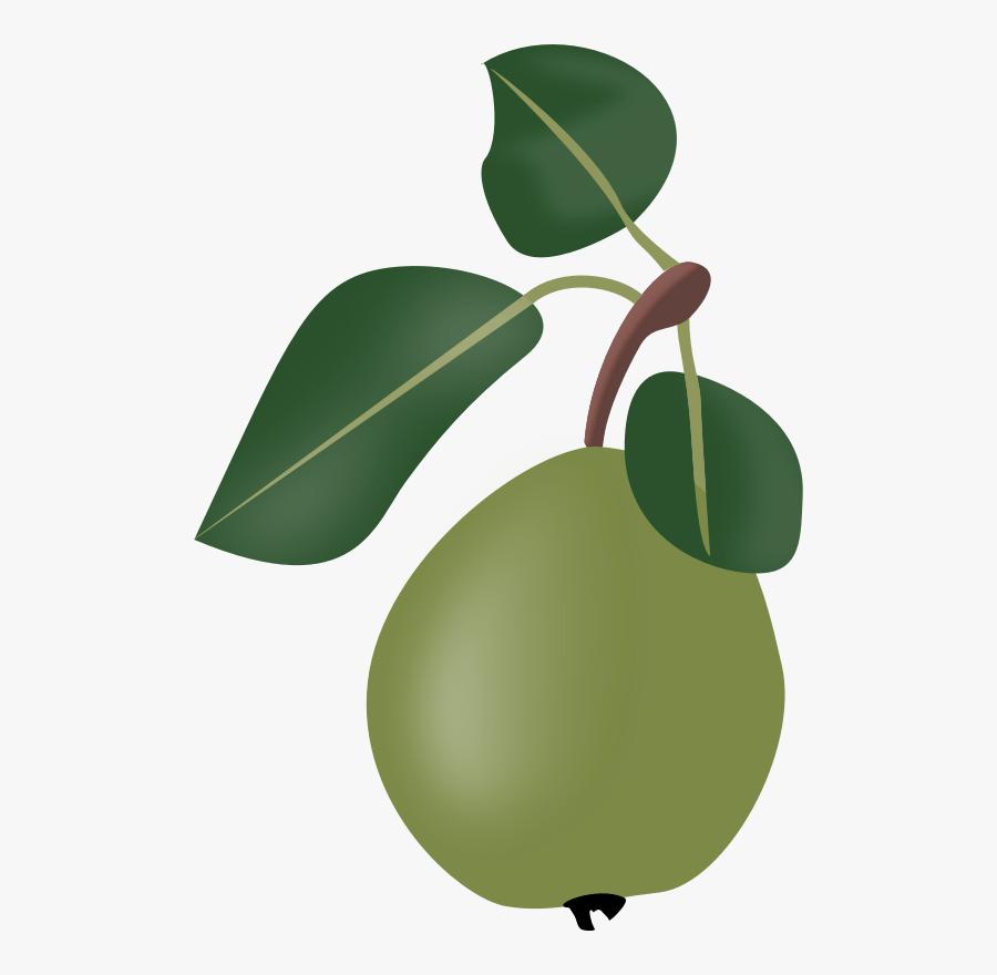 Plant,leaf,food - Stew, Transparent Clipart