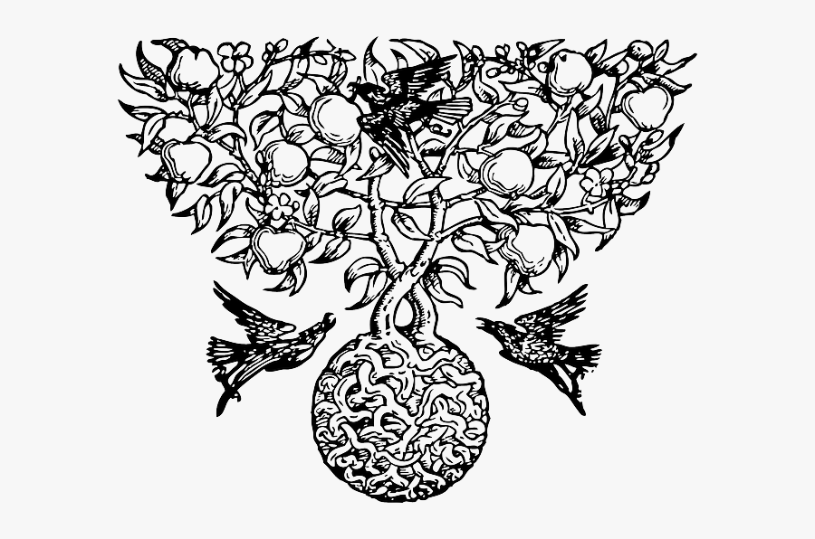 Partridge Pear Tree-33089 - Celtic Tree Of Life, Transparent Clipart