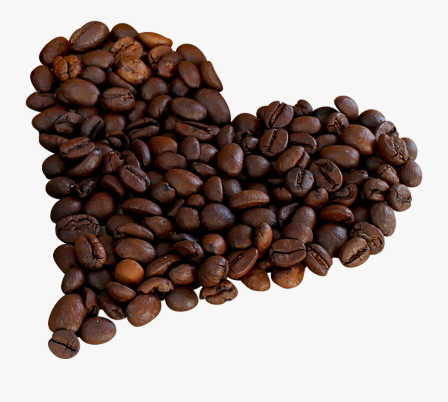 Single Coffee Bean Png - Png Clipart Coffee Beans Png, Transparent Clipart
