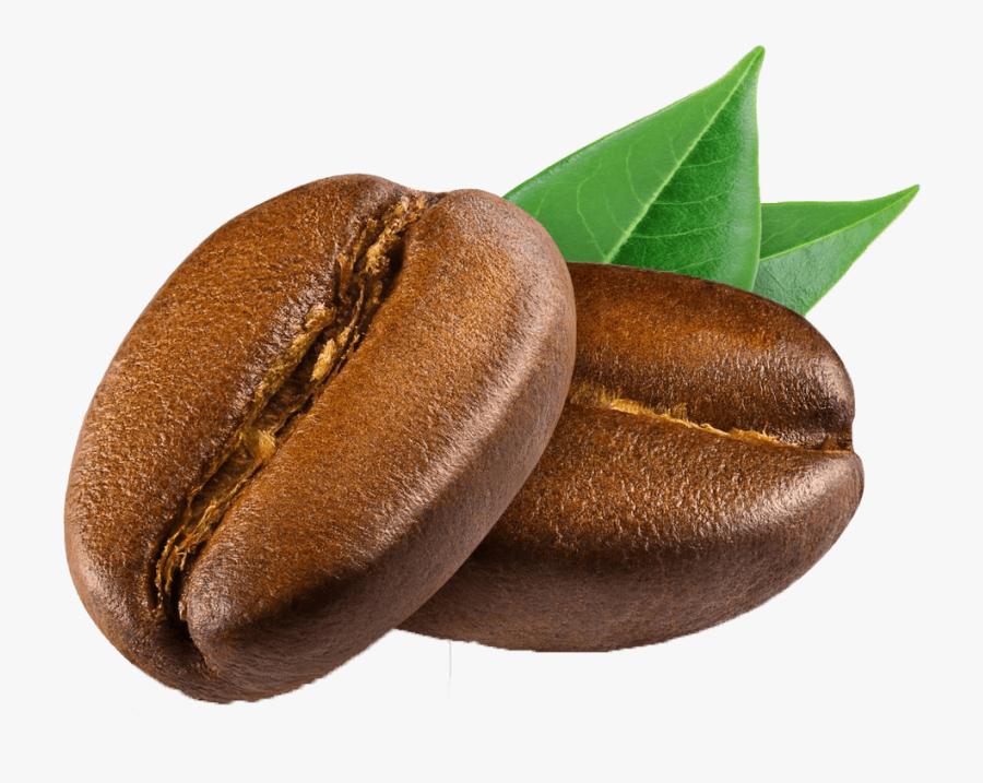 Coffee Bean Png - Coffee Bean Png Hd, Transparent Clipart