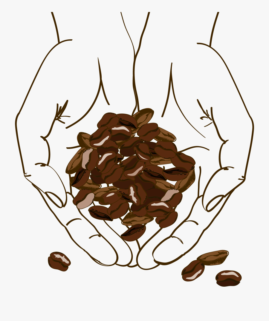 Clip Art Cafe Brown Holding Beans - Coffee Bean Illustration Png, Transparent Clipart