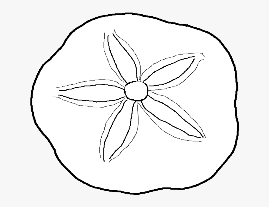 Coloring Pages Sea Shells Seashell Coloring Page Free Transparent Clipart Clipartkey