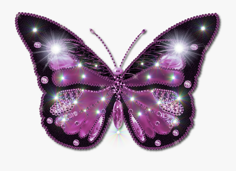 Beautiful Butterfly Image Download, Transparent Clipart
