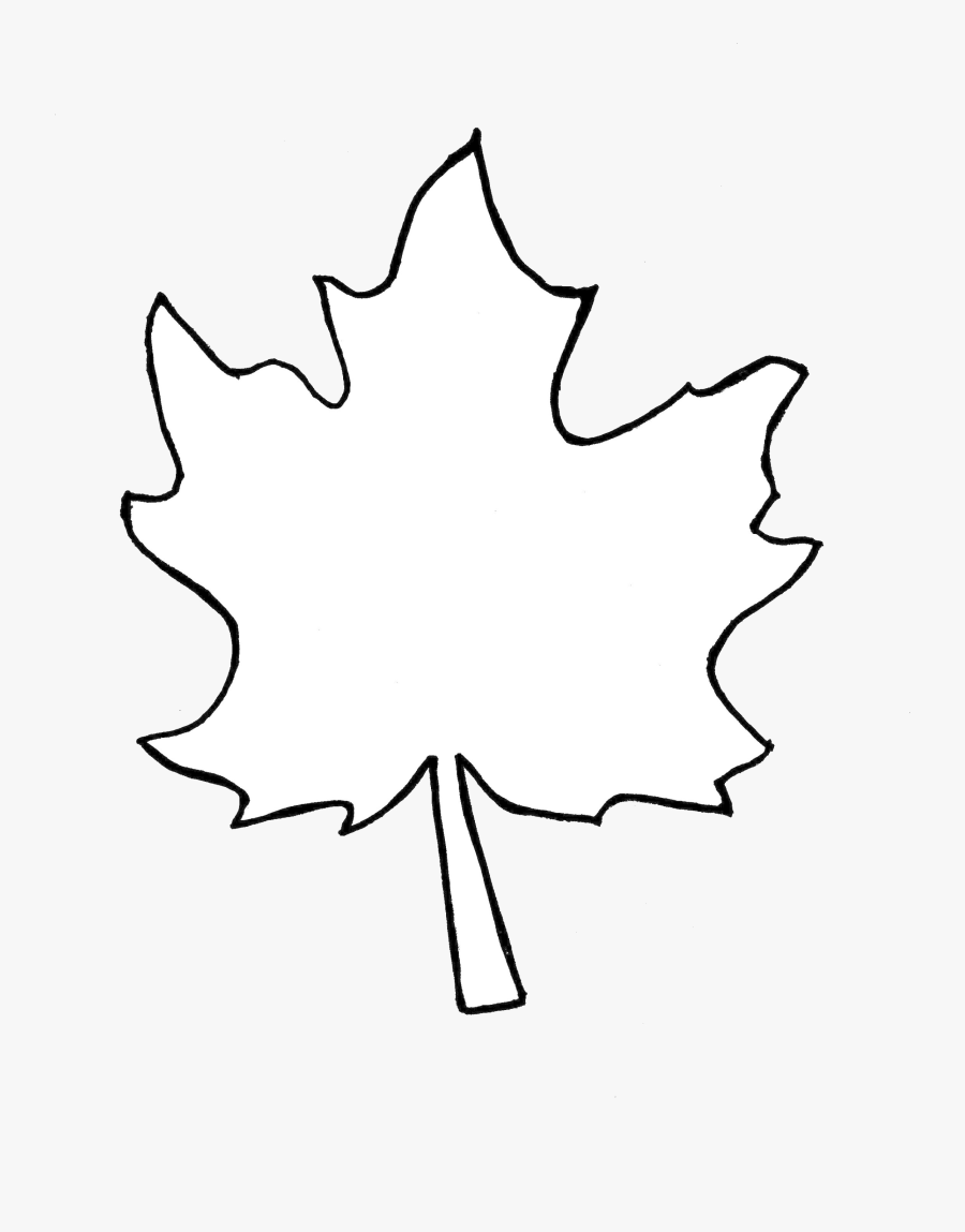 Leaf Outline Collection Fall Leaves Pictures Transparent - Fall Leaf Outline Png, Transparent Clipart