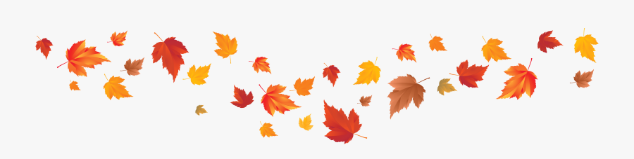 Autumn Leaf Color Autumn Leaf Color Red Maple Maple Fall Leaves Transparent Background Free Transparent Clipart Clipartkey