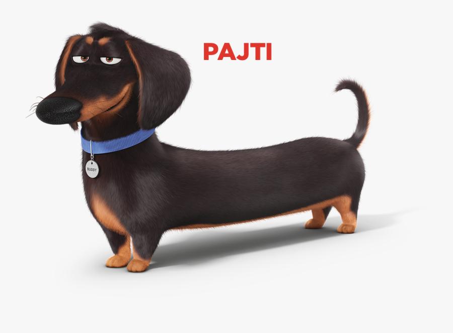 Secret Life Of Pets Ivan, Transparent Clipart