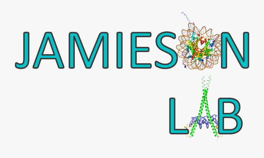 Histone Modification, Transparent Clipart
