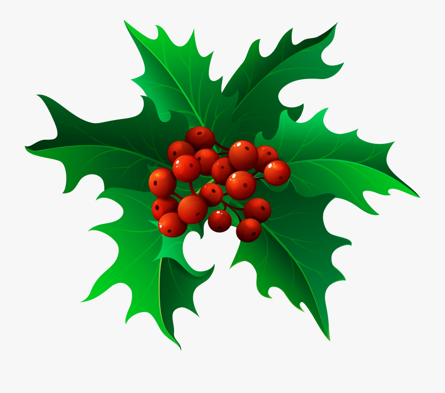Christmas Holly Mistletoe Png - Transparent Background Holly Clipart, Transparent Clipart