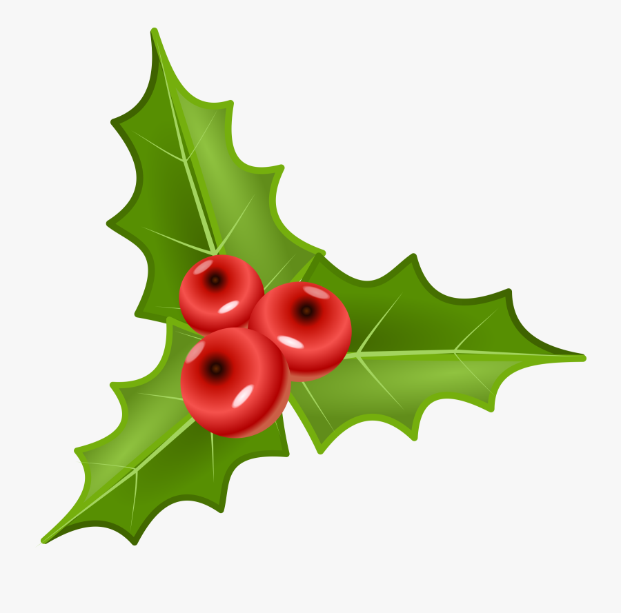 Houx, Holly - Holly Plant Png, Transparent Clipart